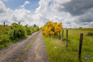 randonnée d'une journée avec le Foyer Rural de Seugy