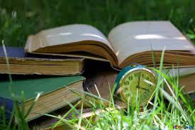 Salon du Livre de Seugy et lire en fête